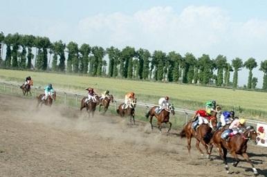 هشتمین جشنواره فرهنگی ورزشی اسبدوانی درورزقان - روستای کرویق