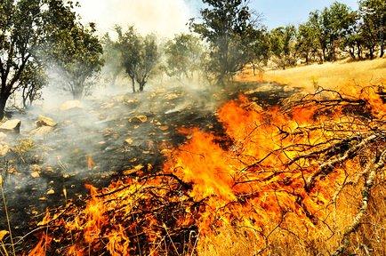 بلاي آتش همچنان گريبانگير مراتع ورزقان