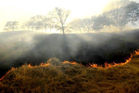 آتش سوزی مراتع در شهرستان ورزقان