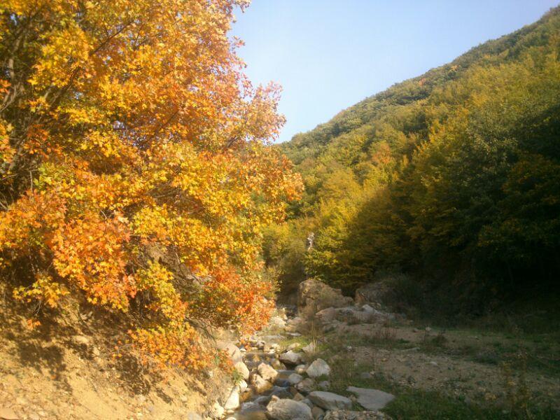 روستای برازین - طبیعت